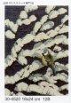 小鳥 雪の小枝 アオガラ